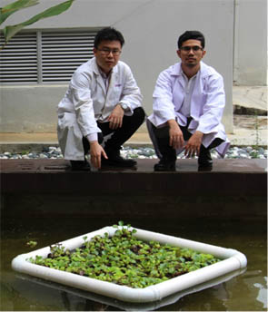 Figure 4 Mohd Hafiyyan bin Mahmud (right) and his supervisor, Dr Lee Khai Ern (left) with their Floating Treatment Wetland (FTW).