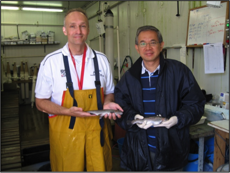 Research at University of Tasmania to explore the use of palm oil in salmon feeds.