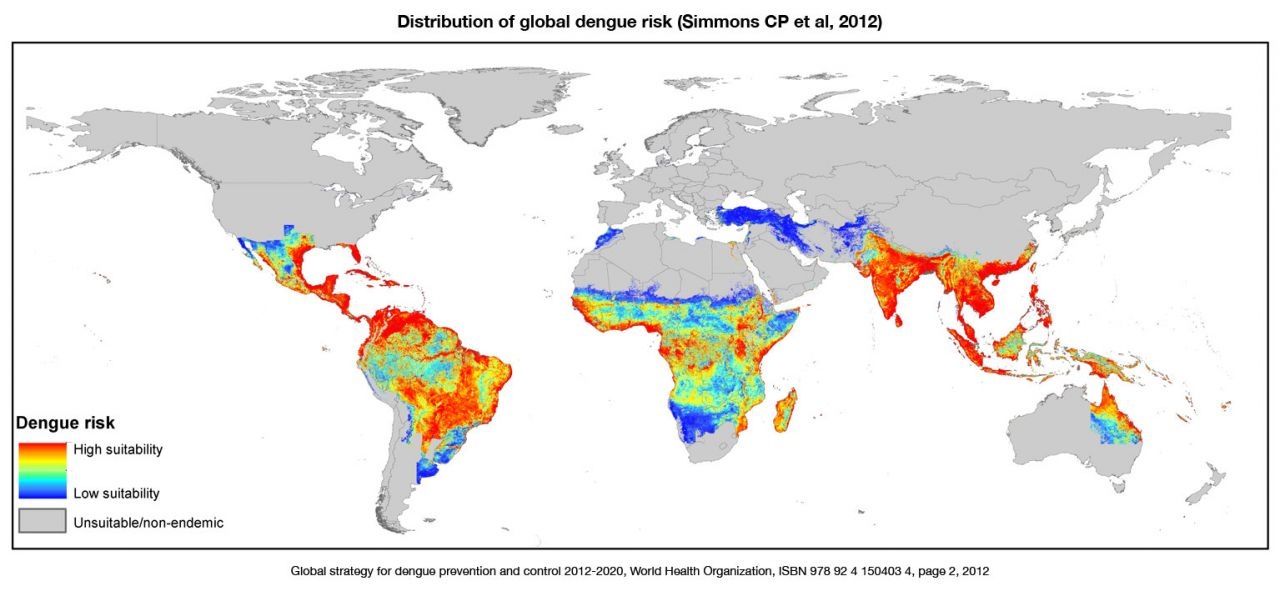 The dengue vaccine dilemma: route to prevention – are we there yet?
