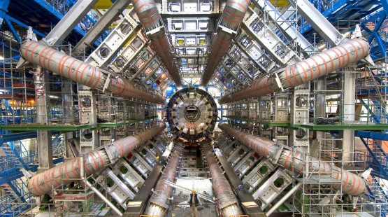 The Marie Curie Fellowship at CERN: A Personal Account