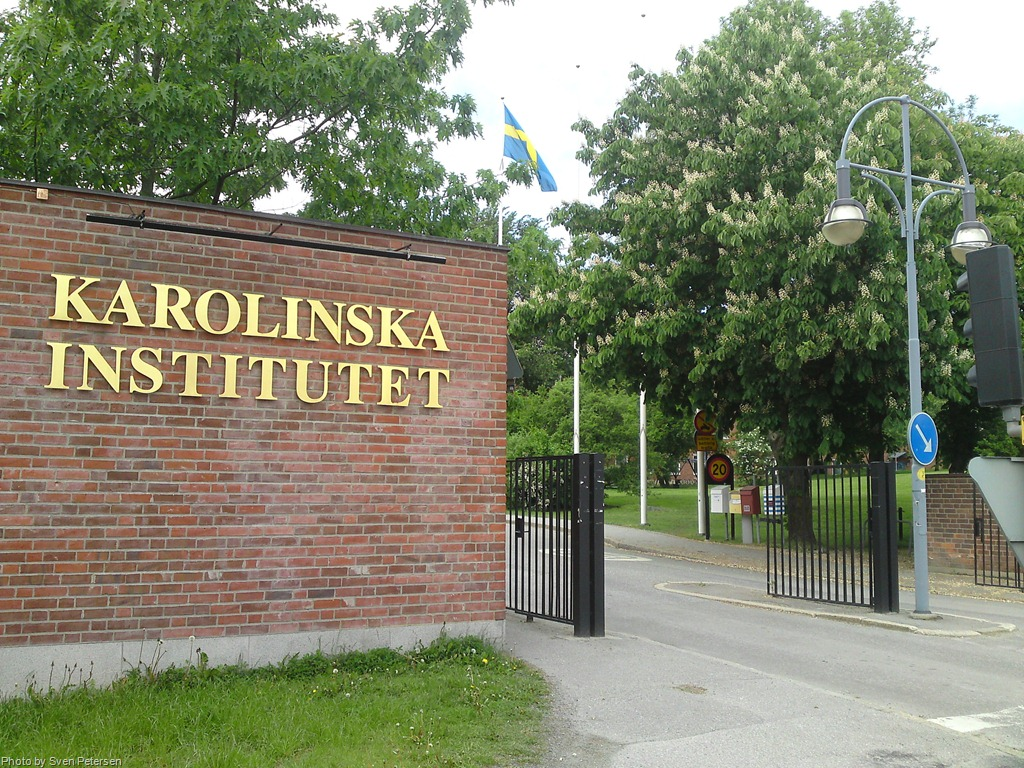 Life as a Postdoc at Karolinska Institutet, Sweden
